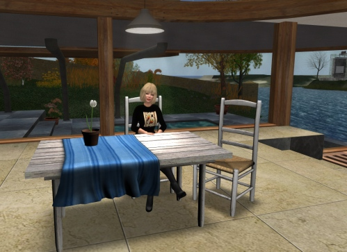 Sitting at the kitchen table (in the latest Linden viewer)
