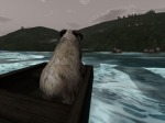 The adventurous sheep sets sail!