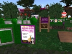 Artwalk in Raglan Shire