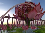 Lotus Stage at SL9B