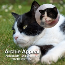 Archie Appeal - before and after the accident