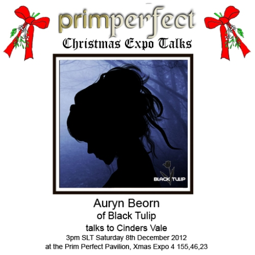 Prim Perfect Talks: Auryn Beorn