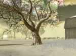 Tree in Wishing Well