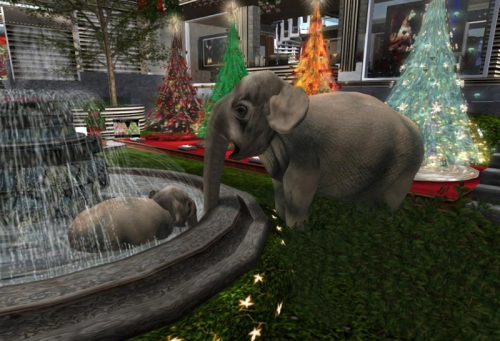 Elephants enjoying the Patron Fountains!