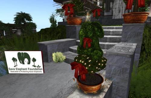 Get your elepphantine Christmas topiary at Patron!