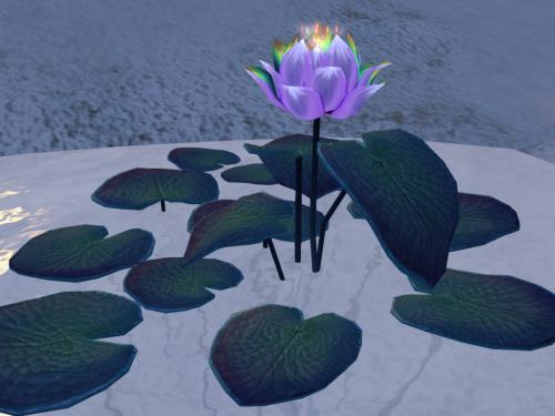 Elicio's Lilies
