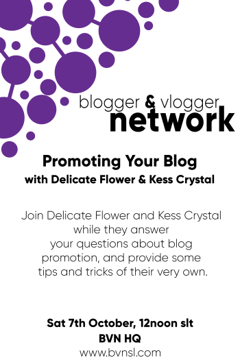 Promoting Your Blog poster