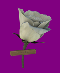 Time's Up White Rose Pin