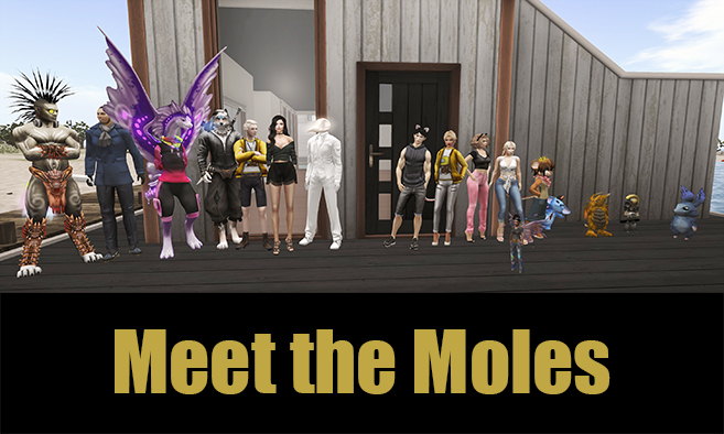 Meet the Moles!